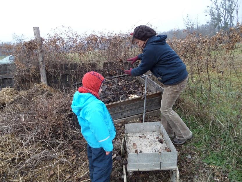 Farm Vasárnap Luca napján