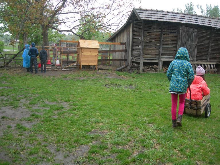Egy esős farmfoglalkozás